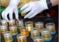 Hakim PN Batam Siap Jalani Tes Urine