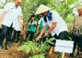 Bantu 1000 Bibit , Pemkab Bintan Dukung Petani Salak di Desa Lancang Kuning