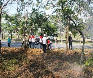Sekretariat-DPRD-Kota-Batam-Melakukan-Gotongroyong-Membersihkan-Lokasi-Di-Depan-Anggrek-Mas-2-Mendukung-Program-Pemerintah-Kota-Batam-Gerakan-Menanam-Sejuta-Pohon-Ketapang-Kencana
