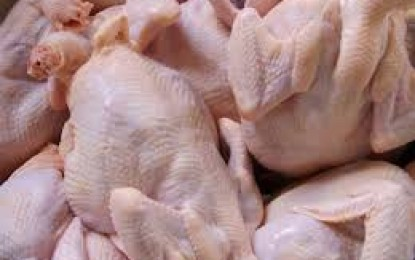 Akhir Agustus, Harga Daging Ayam Diprediksi Stabil