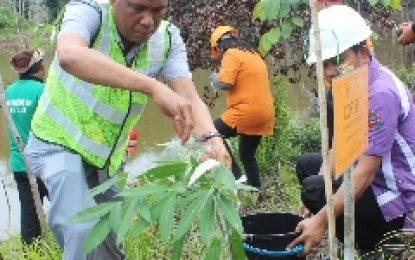 Listrik Andal ,Peduli Lingkungan. bright PLN Batam dan BKSDA Riau Tanam 500 Batang Pohon Pulai
