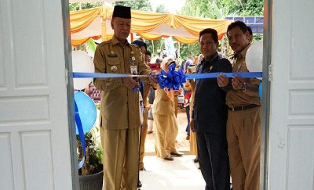 Syahrul Resmikan Dua Posyandu di Dompak dan Balai KB di Tanjungpinang Barat